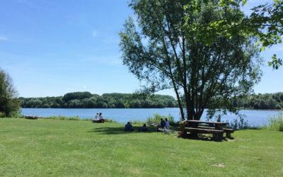 Cours de Yoga au lac du Héron